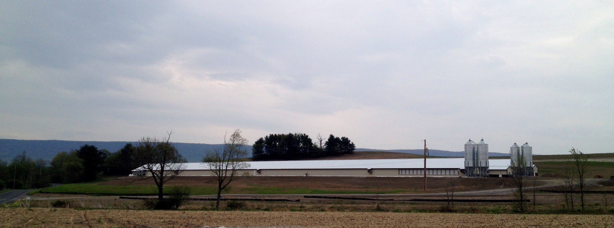 Poultry-Barns-2